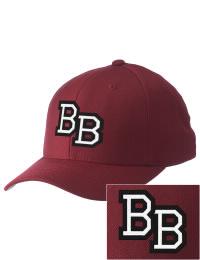 Bradley Bourbonnais High School Alumni