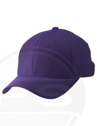 Palmyra Eagle High School Alumni