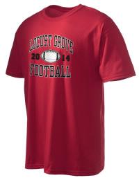 Locust Grove High School Football
