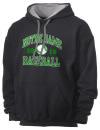 Peoria Notre Dame High SchoolBaseball