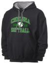 Chelsea High SchoolSoftball