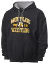 Mount Pulaski High SchoolWrestling