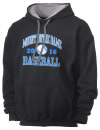 Mount Notre Dame High SchoolBaseball