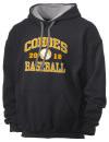 Cohoes High SchoolBaseball