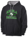 Arcola High SchoolBaseball