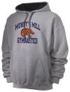 Mundys Mill High SchoolGymnastics