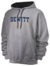 Dewitt High SchoolSwimming