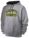 Lecanto High SchoolGymnastics