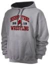 Bishop Byrne High SchoolWrestling