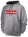 Cedar Bluff High School