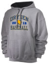 Dryden High SchoolBaseball