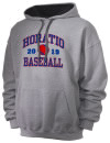 Horatio High SchoolBaseball