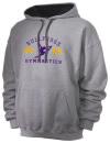 Bret Harte Union High SchoolGymnastics