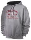 Colusa High SchoolVolleyball