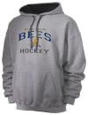 Vista High SchoolHockey