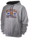 Hollywood Hills High SchoolSoftball