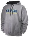 Etowah High SchoolGymnastics