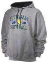 Etowah High SchoolSoftball