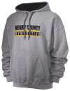 Henry County High SchoolGymnastics