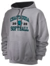 Big Bear High SchoolSoftball