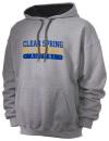 Clear Spring High School