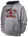 Bold High SchoolBaseball