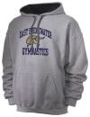 East Bridgewater High SchoolGymnastics