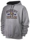 Roxbury High SchoolCheerleading