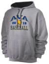 Ava High SchoolBaseball
