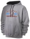 North Forsyth High SchoolBaseball