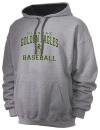 Glenoak High SchoolBaseball