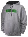 North Boone High SchoolGymnastics