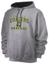 Coal City High SchoolMusic