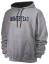Homestead High SchoolGymnastics