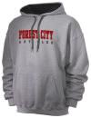Forest City High SchoolArt Club