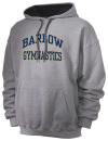 Sam Barlow High SchoolGymnastics