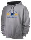 Apollo Ridge High SchoolGymnastics