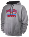 Cambria Heights High SchoolHockey