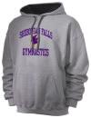 Sheboygan Falls High SchoolGymnastics