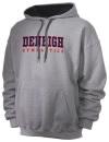 Denbigh High SchoolGymnastics