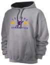 Northwestern High SchoolGymnastics