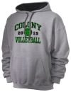 Colony High SchoolVolleyball