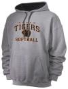 Huron High SchoolSoftball