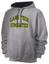 Lane Technical High SchoolGymnastics