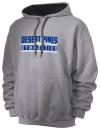 Desert Pines High SchoolGymnastics