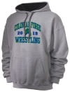 Colonial Forge High SchoolWrestling