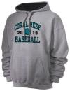 Coral Reef High SchoolBaseball