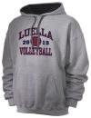 Luella High SchoolVolleyball