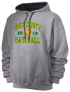 Rhea County High SchoolBaseball