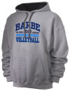 Barbe High SchoolVolleyball